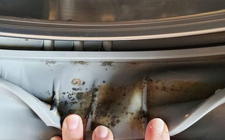 چند روش شستشوی لاستیک ماشین لباسشویی